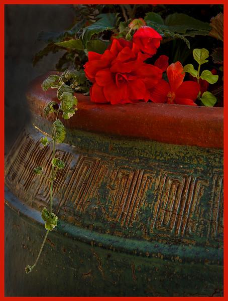 111.Scott Carter.1.Helen's Flower Pot.jpg