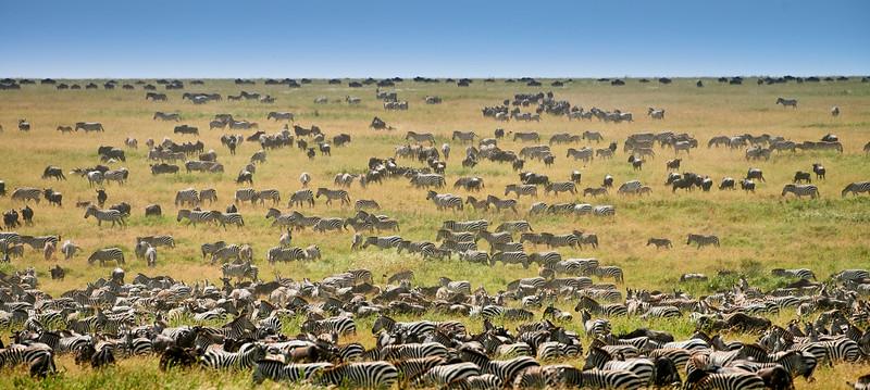 Tanzania selection 195.jpg
