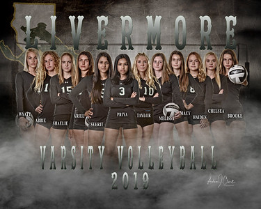 LHS Ladies Volley Ball 2019