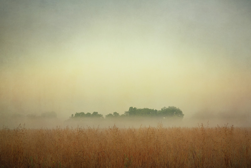 Foggy sunrise.<br /> <br /> Texture by Shadow House Creations.