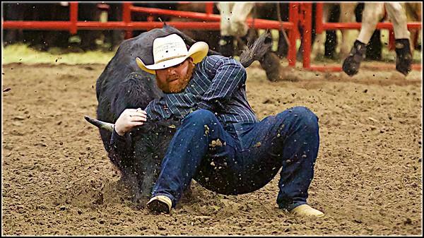 2019 Steer Wrestling