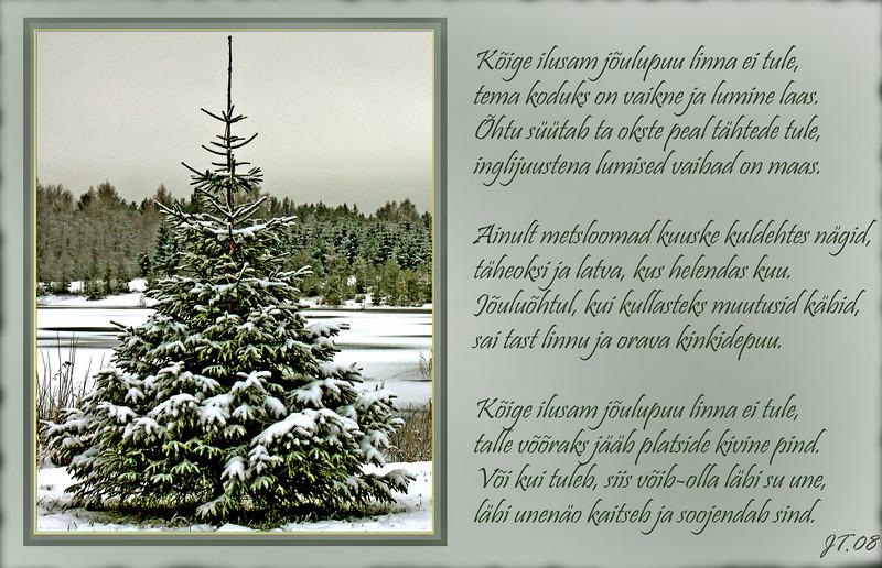 Jõulupuu.jpg