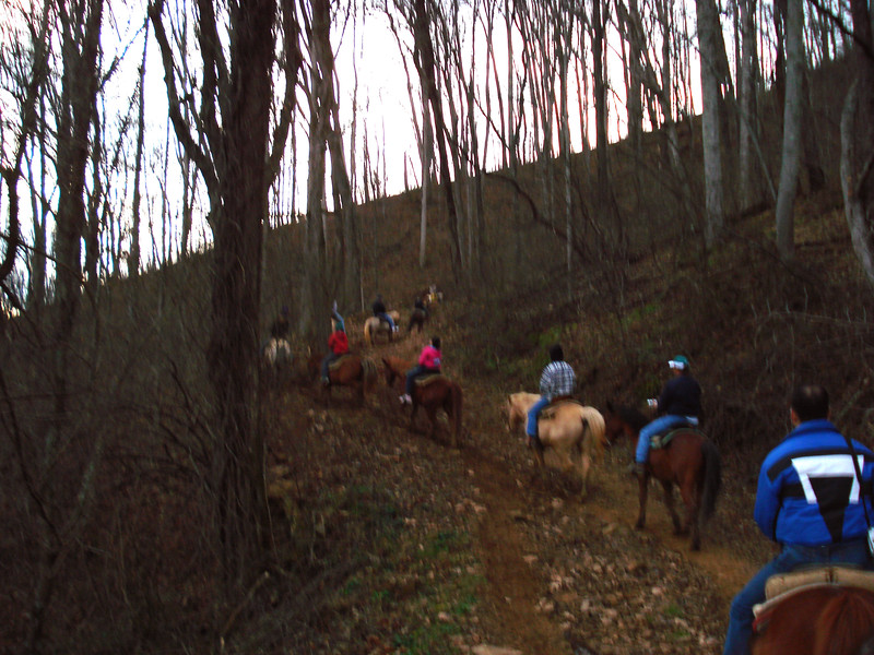 horsetrail15.jpg