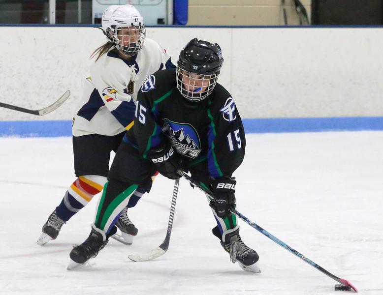 2016-Feb_13-Hockey-JPM2636.jpg