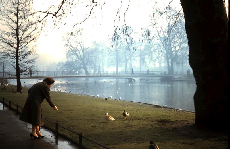1960-2-5 (29) In St James Park, London.JPG
