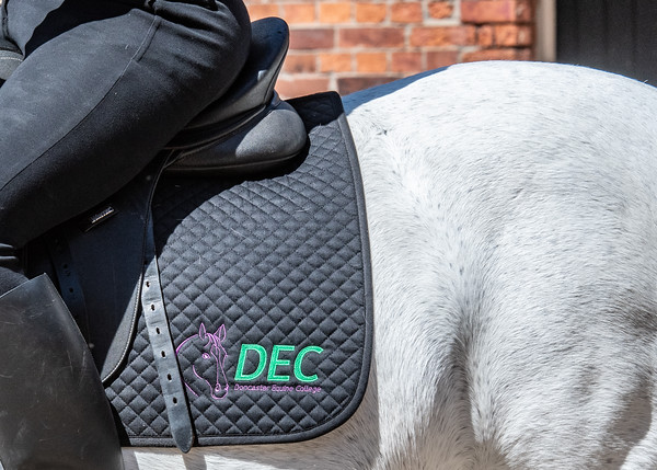 Doncaster Equine College