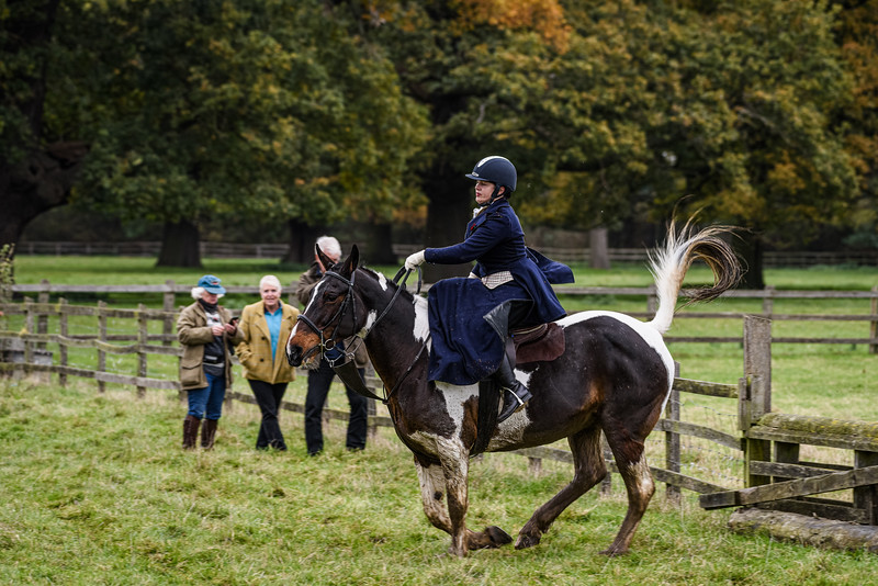 Fitzwilliam Opening meet Nov 2019-319-209.jpg