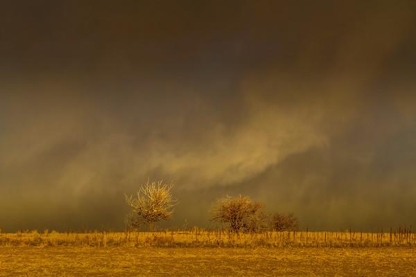 WindstormAuroraCO-001