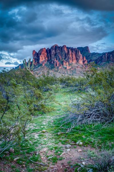 Arizona (9).jpg