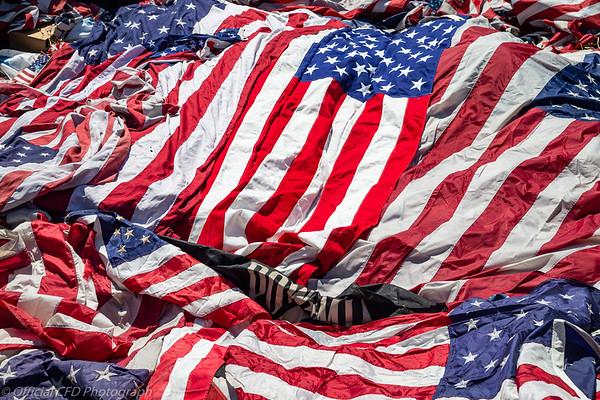 2019-06-14 Flag Day