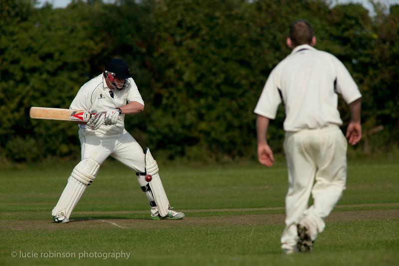 110820 - cricket - 327.jpg