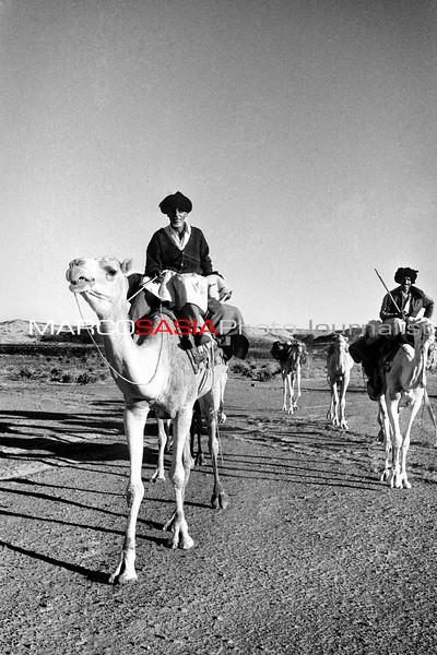 mauritania 29.jpg