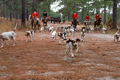 Blessing of the Hounds 11-26-20
