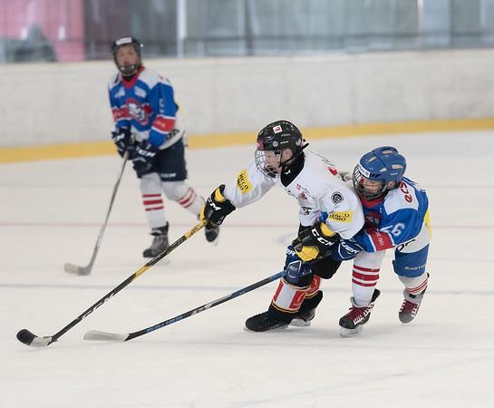 HC Chiasso - HC Lugano - Moskito - 01.12.2018