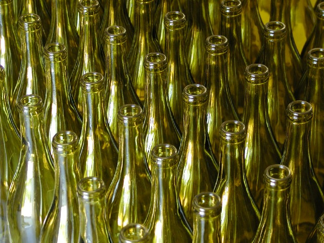 Charddonay bottles ready for the charddonay. This image brings to mind the image of a nest of baby birds, naked, blind, with hungry open mouths pointed to the sky.