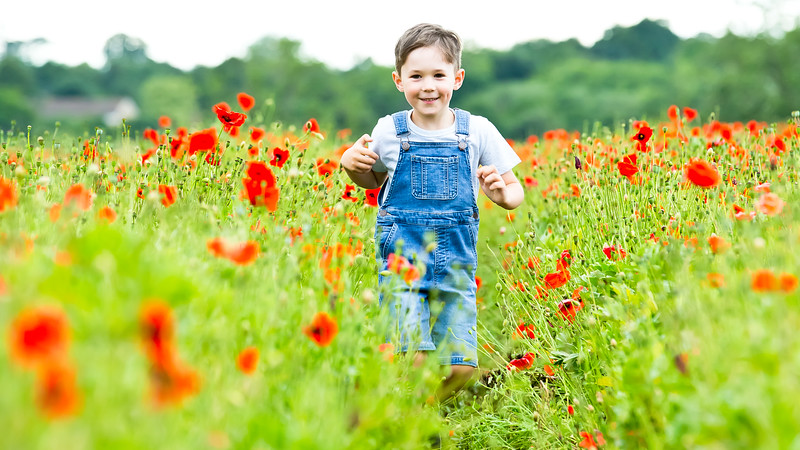 Spencer Poppies