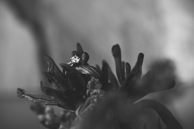 Davi&Gift-4605.jpg