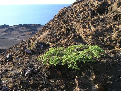 Galapagos Islands topside