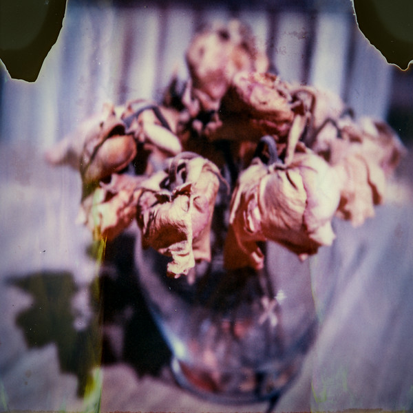 polaroid-glass-flowers012.jpg
