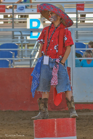2013 Rodeo of the Ozarks
