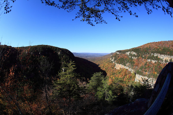 November at Cloudland Canyon