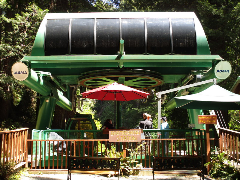 Gondola ride at Trees of Mystery