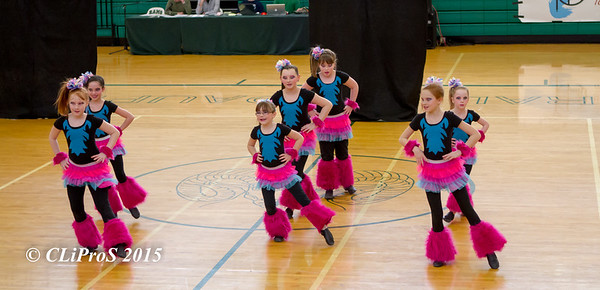 Central Dauphin H.S. 2014 Indoor Guard Show