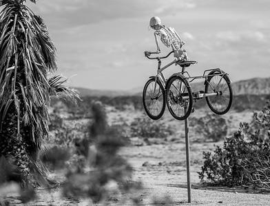Palm Springs / Palm Desert / Yucca Valley