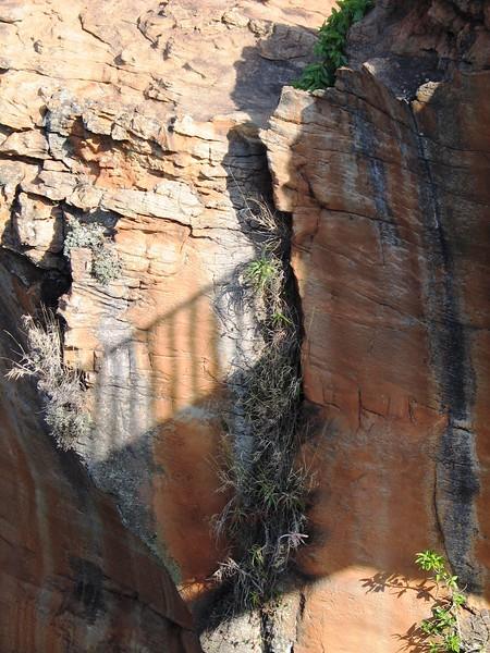 Bryde River Gorge (16).jpg