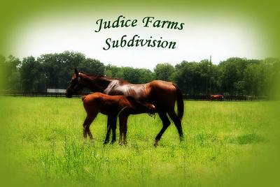 Judice Farms