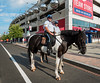 United States Park Police Horse Patrol