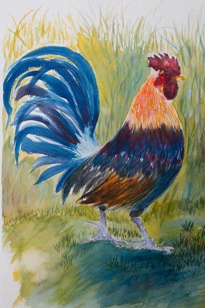 1320-Rooster-©Yvonne Carter.jpg