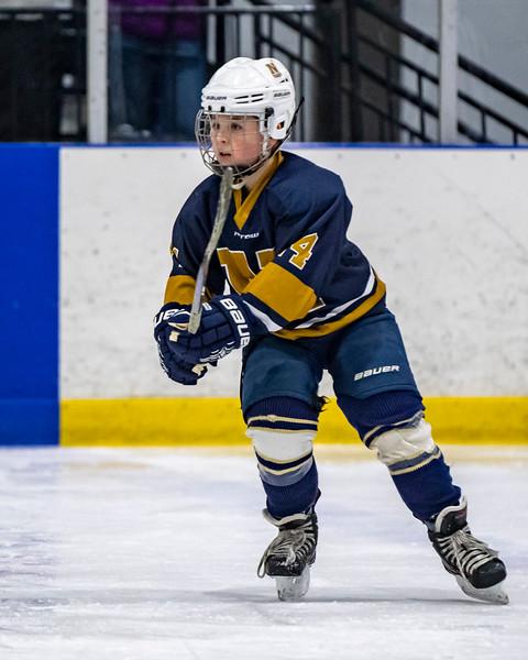 2019-02-03-Ryan-Naughton-Hockey-16.jpg