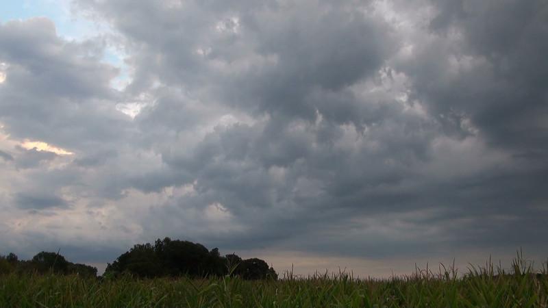 thunderstorm_corn_01_IS.mov