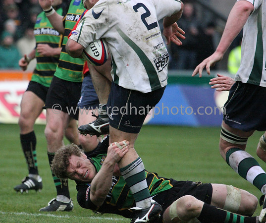 Northampton Saints vs Nottingham, National Division 1, Franklin's Gardens, 29 March 2008
