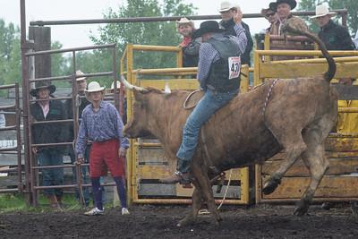 Bulls Saturday 2013