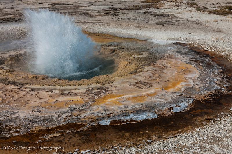 Yellowstone-57.jpg