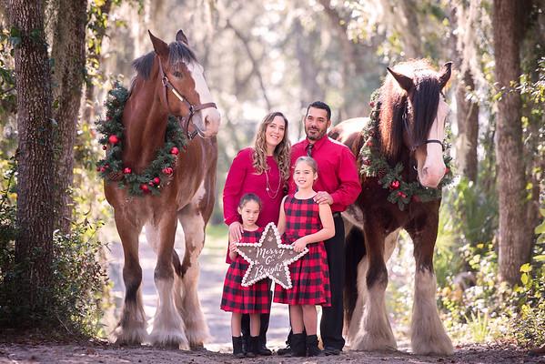 Clydesdales Nov 2018 Crespo Family