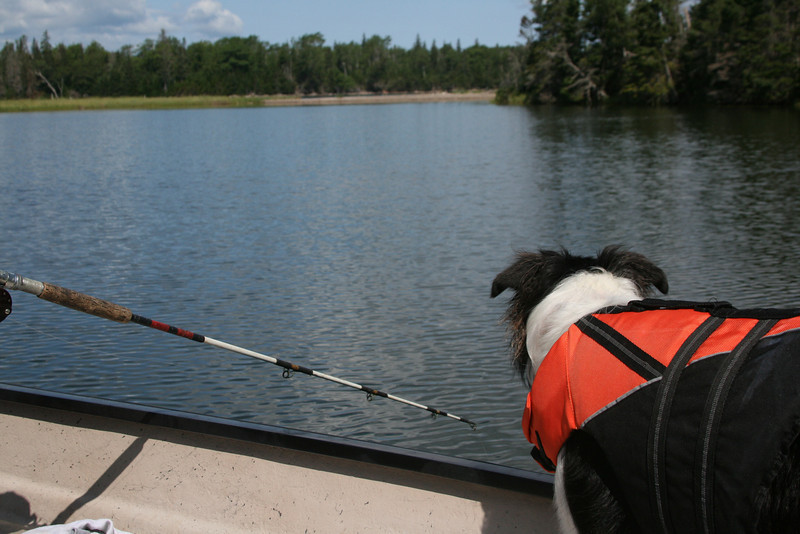 Jayce waiting for the catch (Aug 2010)