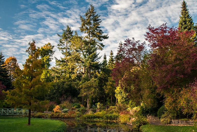 Autumn Colors at the Botanic Garden in Dublin