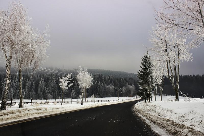 Nedaleko Pohledce u Nového Města na Moravě