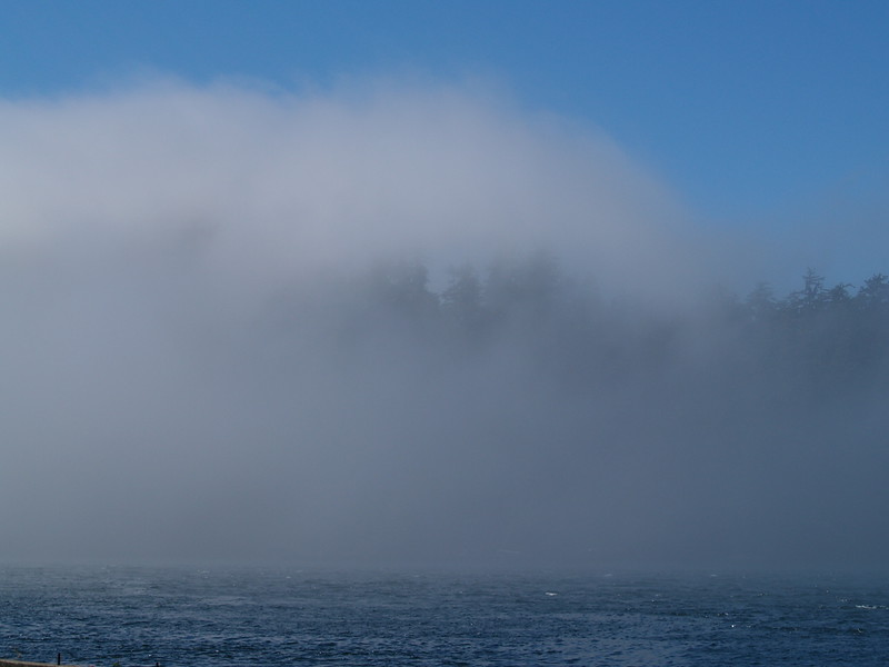 The marine layer fog began to roll in when I came back around 12:30pm. (2009)