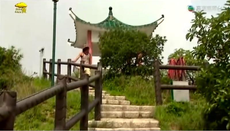 張寶生 in TVB show