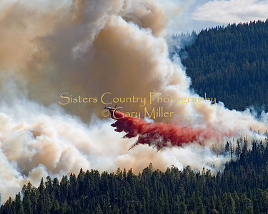 Forest and Wildland Fires