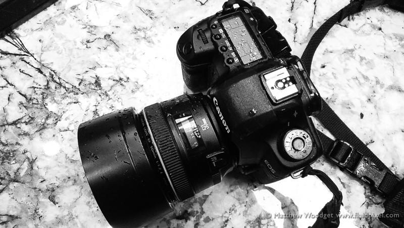 Woodget-130406-016--camera, canon, wet - CHARACTERISTICS.jpg