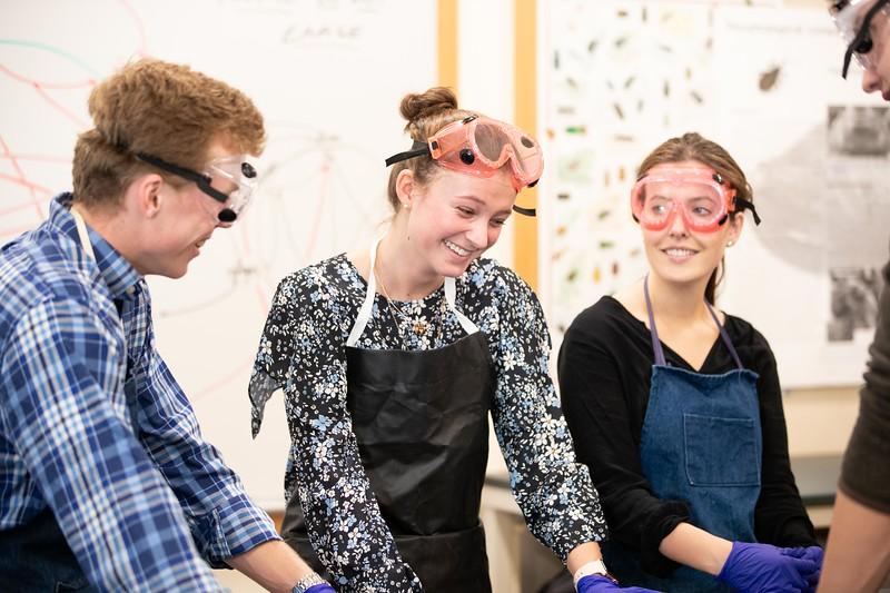 Laura Stoughton AP Psychology Classroom