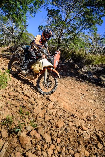 2019 KTM Australia Adventure Rallye (562).jpg