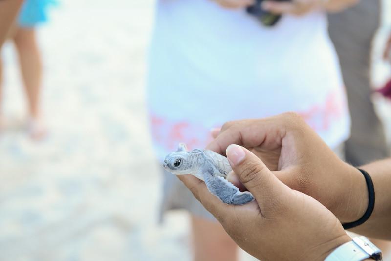 Cancun-20120913-1486--2090296926-O.jpg