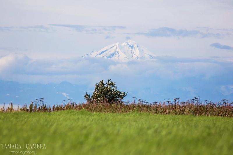 Volcano-3-2.jpg