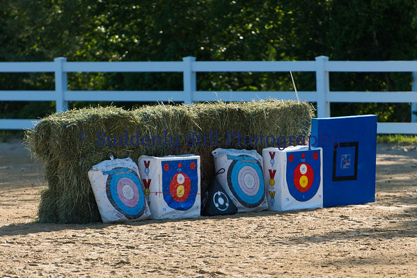 6/9 Mounted Archery Clinic @ LRRA